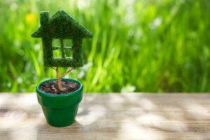 matériaux écologiques rénovation